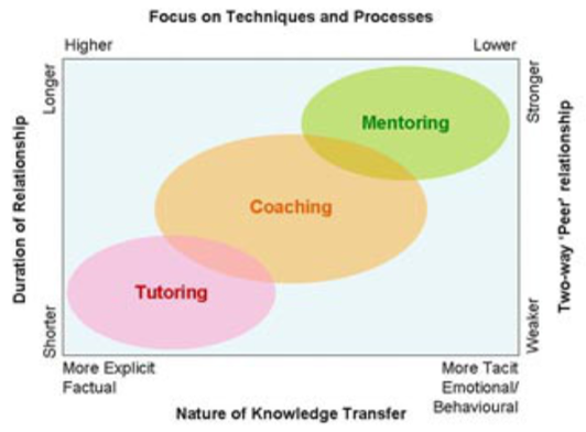 comparing mentoring and coaching essay Difference between coaching and mentoring may 27, 2015 by surbhi s 1 comment in an organization, various employee development programs are undertaken, so as to raise their level of performance.