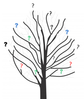 tree with question marks